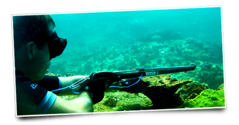 how to hold your breath longer freediving
