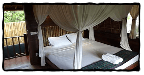 nusa lembongan accommodation with monkey surfing