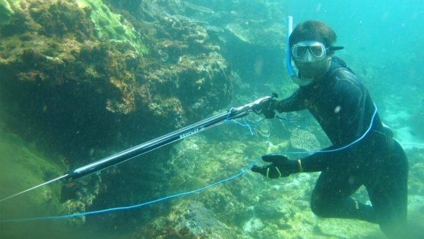 planet spearfishing in bali