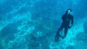remi underwater