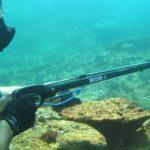 bali spearfishing trip