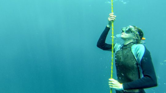 freediving-course-in-indonesia-open-water-session